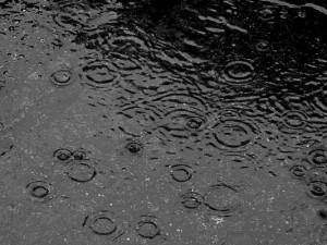 asfalto_pioggia