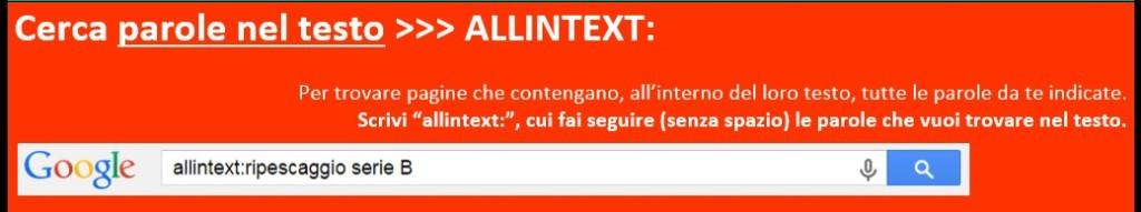 Cerca_parole_testo_del_sito_google