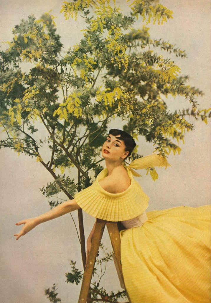 Festa della donna Audrey Hepburn