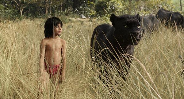 Il Libro della Giungla Mowgli Bagheera