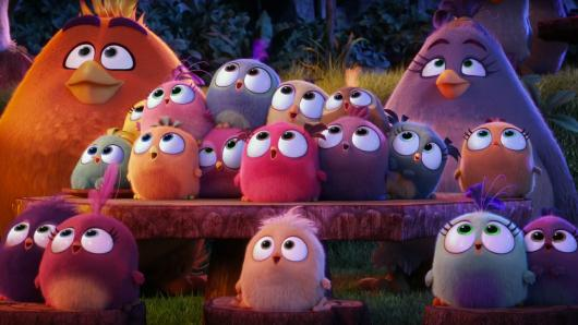 angry birds il film 5