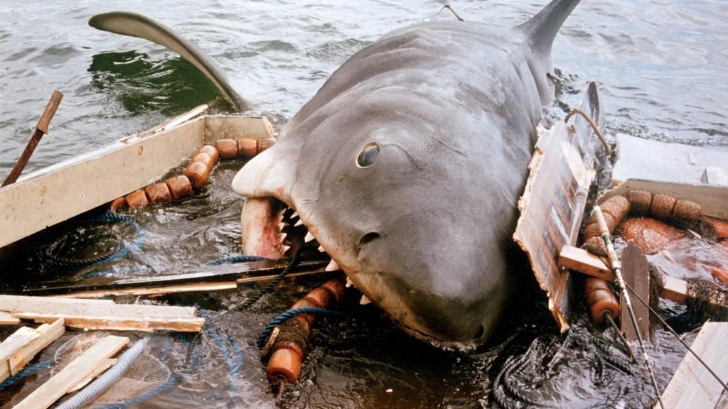 Film legati all'estate - lo squalo