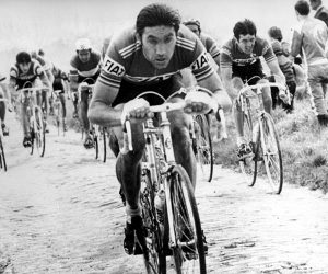 Eddy Merckx record