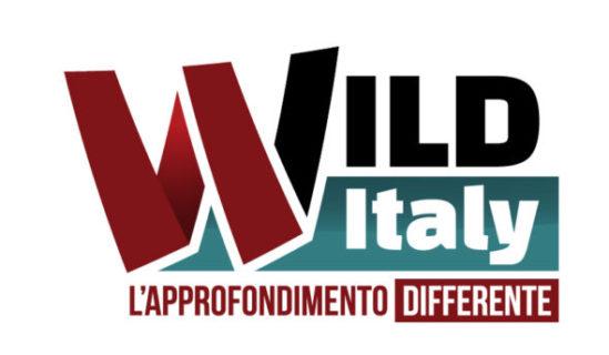 Wild Italy  - L'approfondimento differente